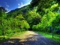 Mountain lane Royalty Free Stock Photos