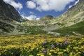Kvetnica, Velicka dolina