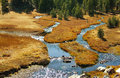 Mountain meadow with creek summer in Stock Photography