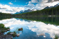 Mountain panorama from Herbert Lake Royalty Free Stock Photos