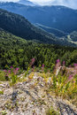 Mountain panorama italy in summer Royalty Free Stock Photography