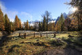 Mountain Pasture With Morning Frost On Grass