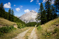 Mountain path Royalty Free Stock Photo