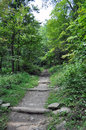 Mountain path an image of a in the shenandoah national park Royalty Free Stock Photos