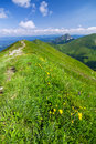 On the mountain-ridge