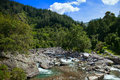Mountain river of bolivia clear surrounded by a forest in southern Stock Image