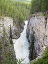 Mountain River at Canadian Rockies Royalty Free Stock Photo