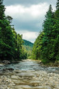 Mountain river. Carpathians, Ukraine. Royalty Free Stock Photo