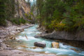 Mountain river evergreen forest canadian rockies turbulent turquoise waters of johnston canyon creek near waterfalls off bow Royalty Free Stock Image