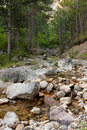 Mountain river flowing from the rock spring season Royalty Free Stock Photography