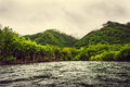 Mountain river with green forest on Kamchatka, Russia Royalty Free Stock Photo
