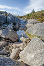 Mountain river in ireland a stream at wintertime Royalty Free Stock Image