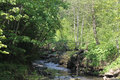 Mountain River with small falls. Royalty Free Stock Photo