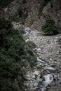 Mountain river. Stones. Green plants. Black-white Royalty Free Stock Photo