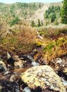 The mountain river is stream. Water runs on the rocks Royalty Free Stock Photo