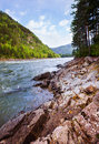 The mountain river in summer Stock Photography