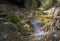 The mountain river with the tiny falls Royalty Free Stock Photo