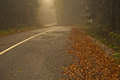 Mountain road covered with fog at autumn, mountain Goc Royalty Free Stock Photo