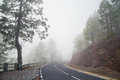 Mountain road in the fog Royalty Free Stock Photo
