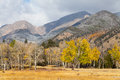Mountain scenic in fall a landscape of a colorado rocky mountains Royalty Free Stock Photography