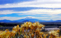 Mountain Shasta Royalty Free Stock Photo