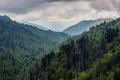 Mountain Slopes Turn Green in Spring in the Smokies Royalty Free Stock Photo