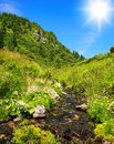 Mountain stream in blooming field on background of blue sky Royalty Free Stock Photo