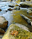 Mountain Stream Cascading over Rocks Royalty Free Stock Photography