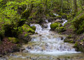 Mountain stream close to arco trento italy Royalty Free Stock Images