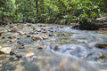 Mountain stream in deep tropical forest Royalty Free Stock Photography