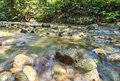 Mountain stream in deep tropical forest Stock Images