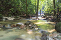Mountain stream in deep tropical forest Royalty Free Stock Photos