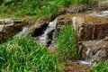 The mountain stream falling water and green grass in kyrgyzstan Stock Image