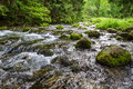 Mountain stream flowing between mossy stones in summer Stock Image