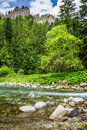 Mountain stream flowing into a pond on a background of mountains in summer Royalty Free Stock Image