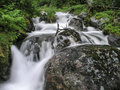 Mountain stream flowing water of Royalty Free Stock Photos