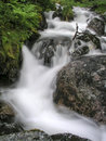 Mountain stream flowing water of Royalty Free Stock Photo