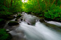 Mountain stream in japan Royalty Free Stock Image