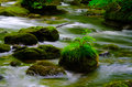 Mountain stream in japan Stock Photography