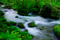Mountain stream in japan Stock Image