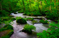 Mountain stream in japan Royalty Free Stock Photography