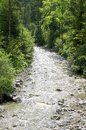 Mountain stream in the limestone alps in upper austria Stock Photo