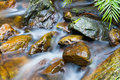 Mountain stream the through rocks Royalty Free Stock Image
