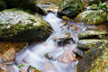 Mountain stream the through rocks Stock Images