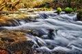 Mountain stream running over mossy rocks Stock Image