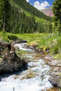 Mountain stream in silverton colorado Royalty Free Stock Photos