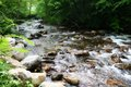 Mountain stream summertime Stock Photos