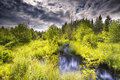 Mountain Stream in the Tetons Royalty Free Stock Photo