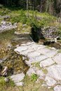 Mountain stream. A view of a mountain stream in National Park Royalty Free Stock Photo