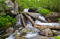 Mountain stream with waterfall and the logs of destroyed crossing in it Stock Images